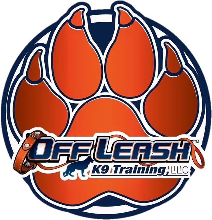 Off-leash k9 training digital agency